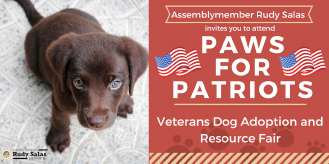 Paws for Patriots Horizontal Graphic