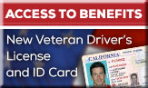 /article/special-drivers-licenses-and-identification-cards-help-veterans-gain-access-benefits